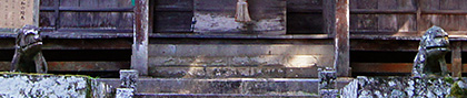 151006天城神社のシイ8