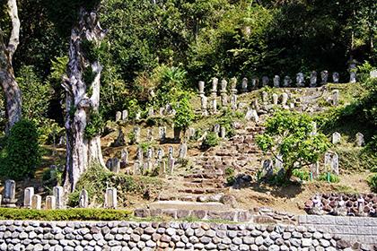 151006静岡県-弘道寺の裏