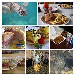 ハワイの自然、料理