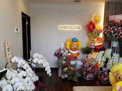 ④ダンデライオン花写真