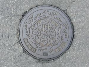 110604-1145.jpg