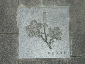 140517-137.jpg