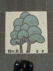 140519-093.jpg