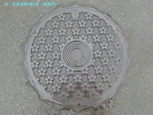 kawaguti02.jpg