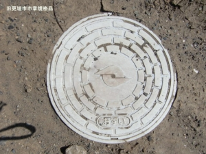 kousyoku06.jpg