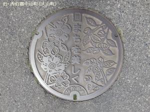nakayama02.jpg