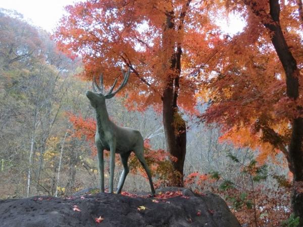 2015-11-7 群馬、栃木 032
