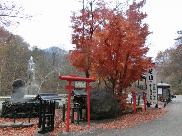 2015-11-7 群馬、栃木 031