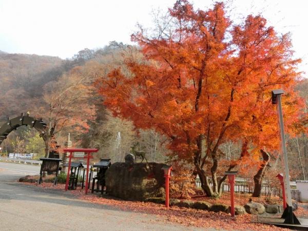 2015-11-7 群馬、栃木 037