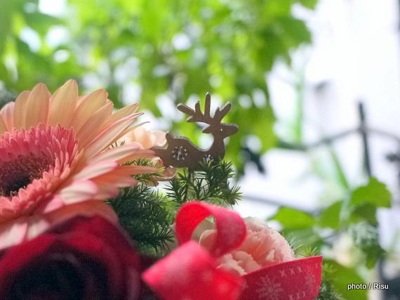 ユーハイム「バウムクーヘンのセット」日比谷花壇