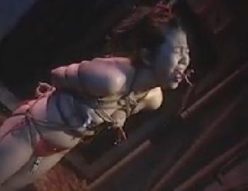 M奴開眼責め縄調教録 平成素人人妻裏性道 - 無料エロ動画 - DMMアダルト
