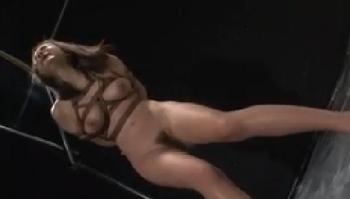 惨烈毒牙伝 乳獣に成りさがる清麗女子 鶴田かな - 無料エロ動画 - DMMアダルト