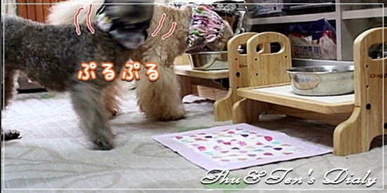003IMG_8883-2.jpg