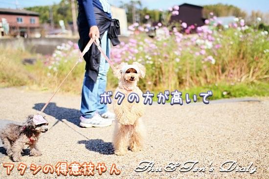 009IMG_2643.jpg