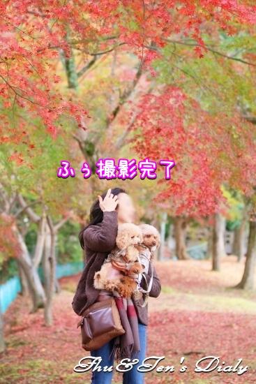 012IMG_3973.jpg