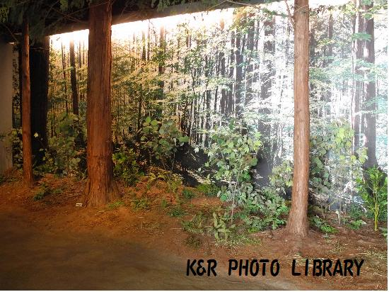 4月12日長野県立歴史館2