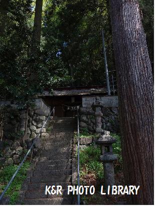 5月4日諏訪神社2