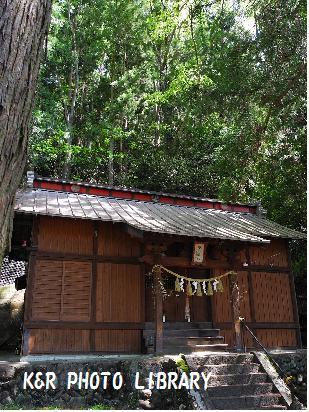 5月4日諏訪神社3