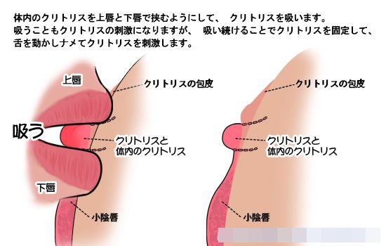 manzokunosusume_kunni_kuri_sui.jpg