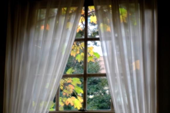 窓辺-4_R