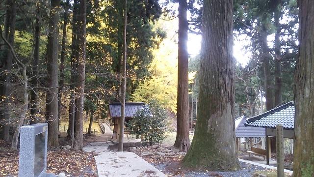 151125 菩提寺① ブログ用