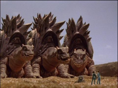迎えに来たアラドスの成獣たち