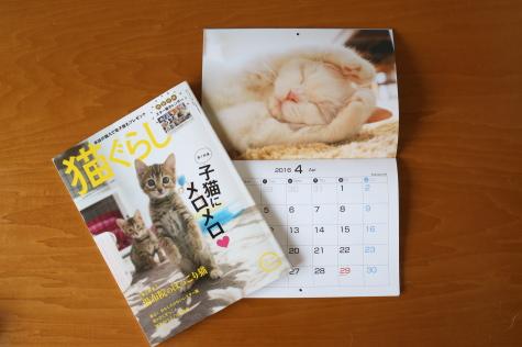 IMG_0290urabanashi.jpg