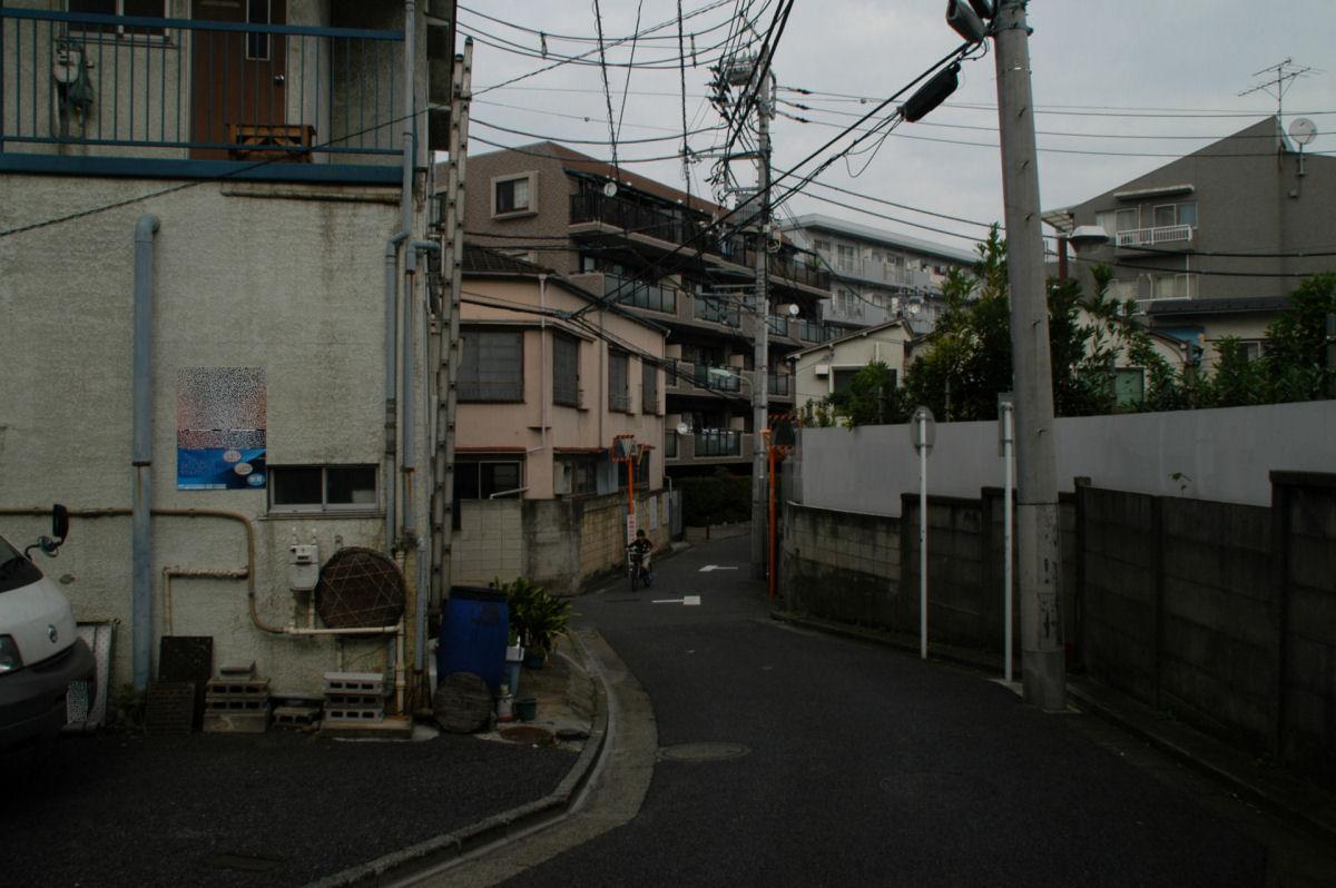 nshishina14100033.jpg
