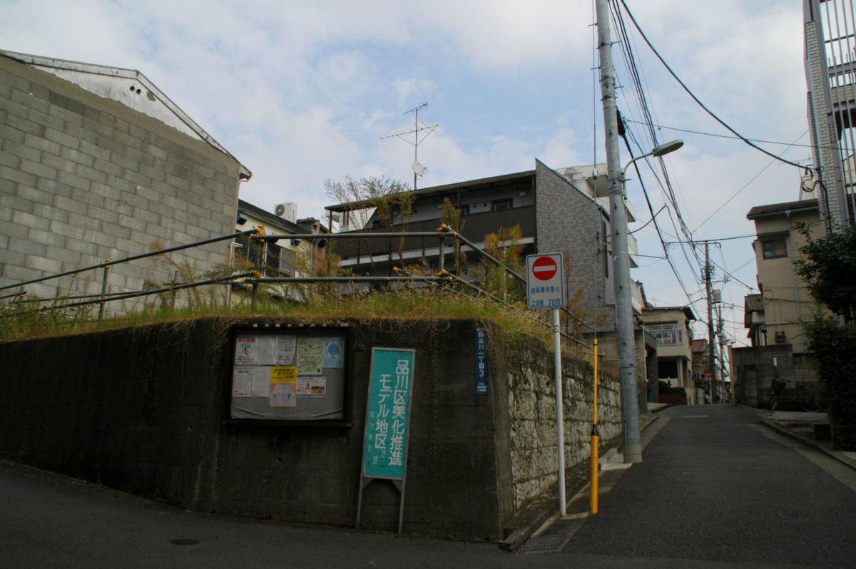 nshishina14100053.jpg