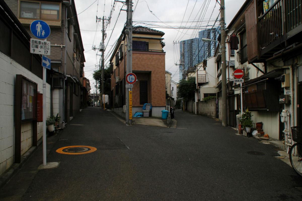 nshishina14100054.jpg