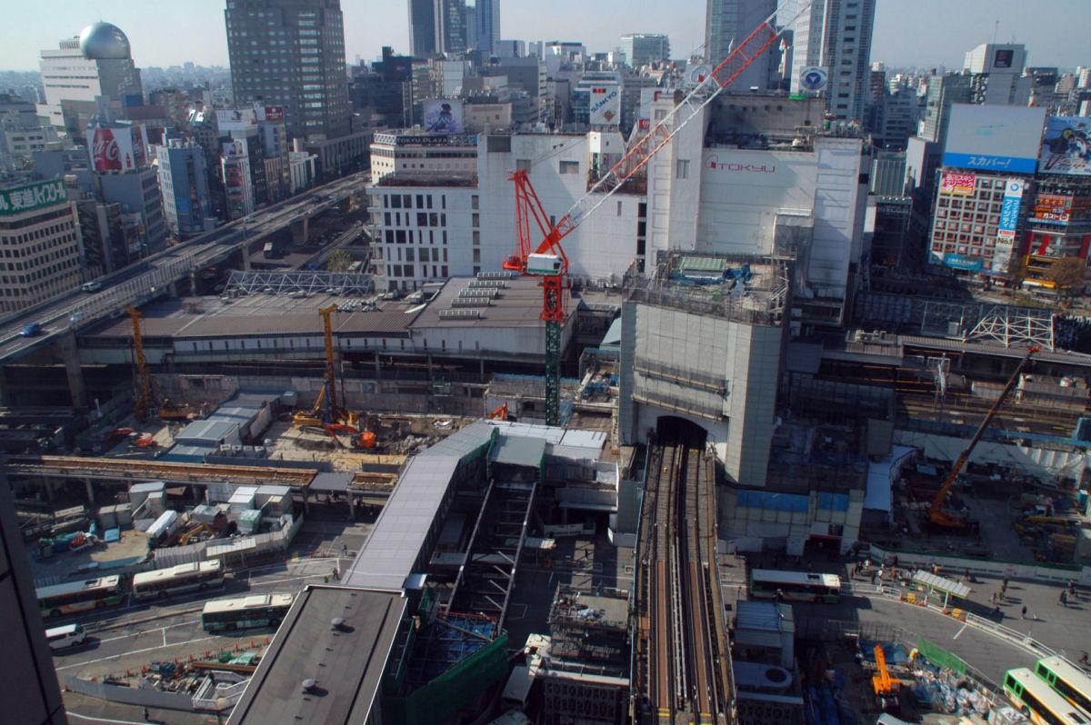 shibuya15010010.jpg