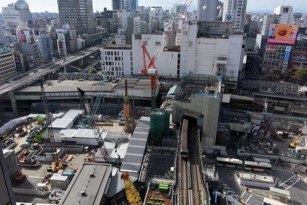 shibuya15110032.jpg