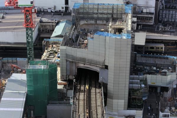 shibuya15110033.jpg