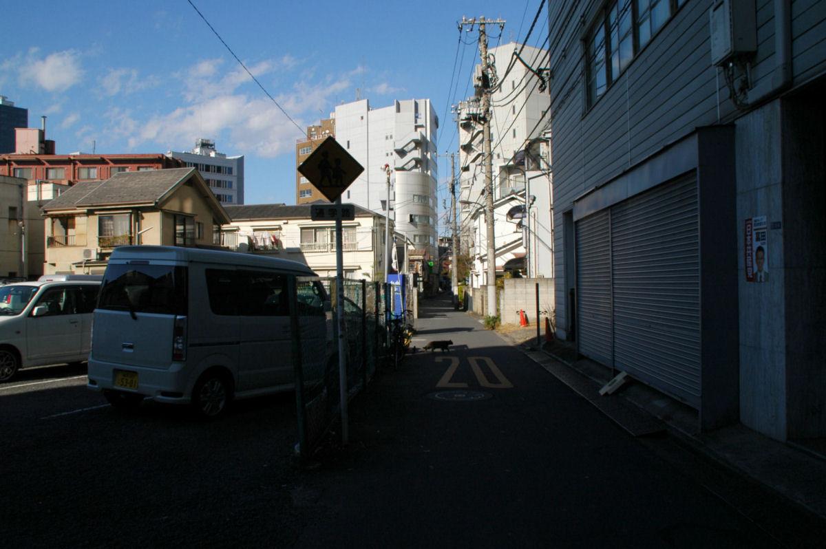 shijuku5wn14120092.jpg