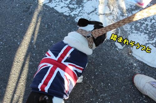 2015 羽島なまず祭り 2