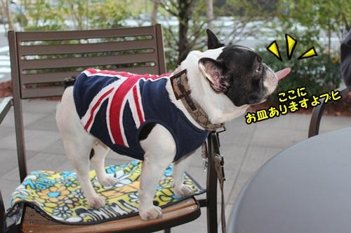2015 羽島なまず祭り 10