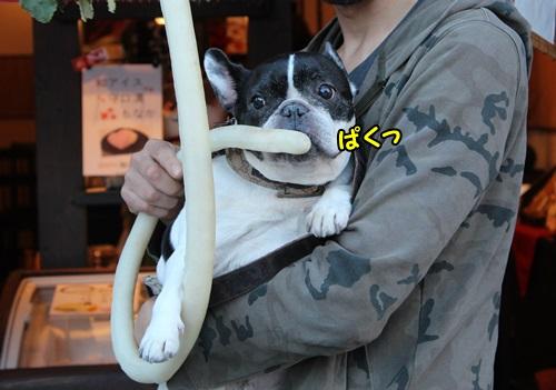 2015 犬山6