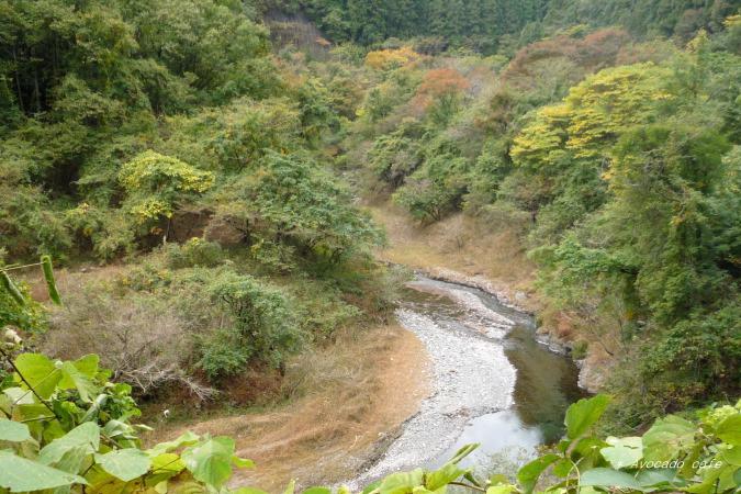 梅田湖の川
