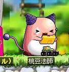 ピンクビーン「桃豆法師」、135.140