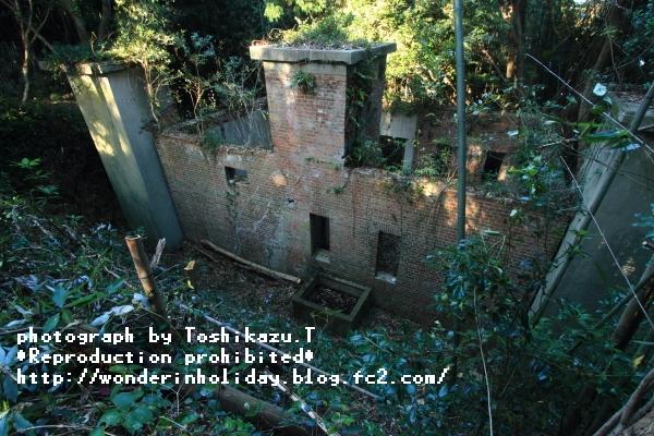 IMG_7239s.jpg