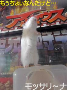 $モッサリ〜ナ-4
