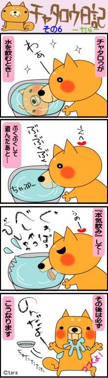 $モッサリ〜ナ-チャタロゥ日記6