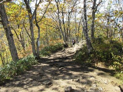 剣山一の森