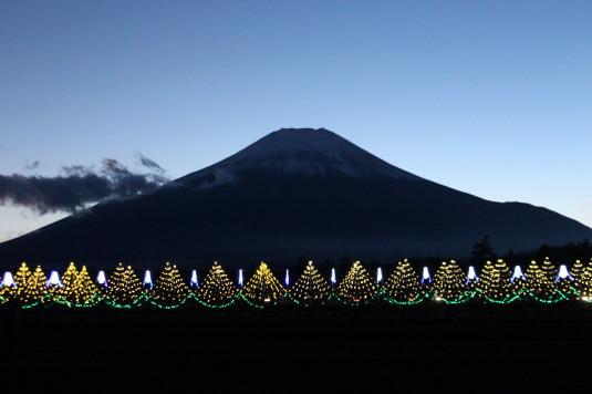 イルミ 花の都公園 富士山