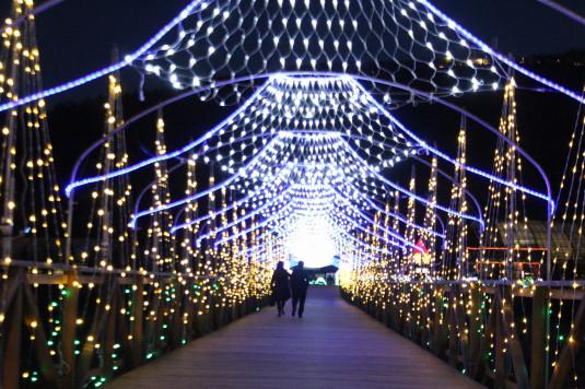 イルミ 花の都公園 橋