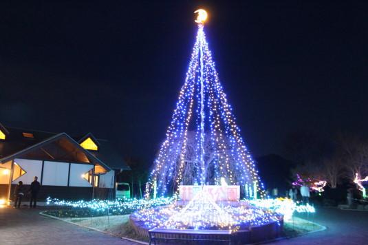 イルミ 花の都公園 タワー