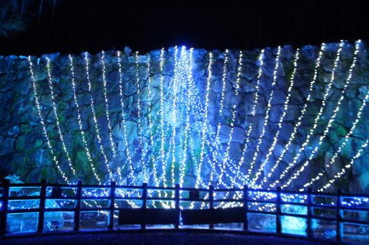 イルミ 花の都公園 滝