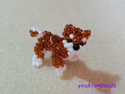 Y様作 柴犬