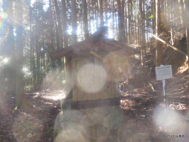 DSCN1592_20151108114415e91.jpg