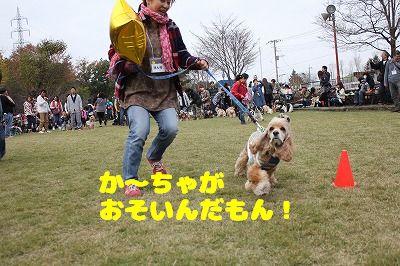 埼玉オフ会 (37)